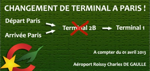 Camair Co Change De Terminal 224 Paris Actualite En