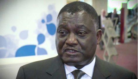 Le ministre Leon N'zouba