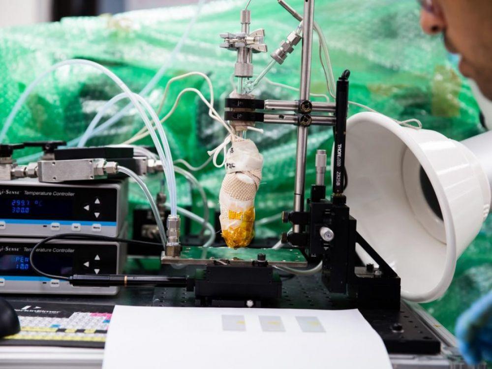 """Les chercheurs ont adapté une technique d'impression utilisée en électronique, appelée """"impression par jet de vapeur organique""""."""