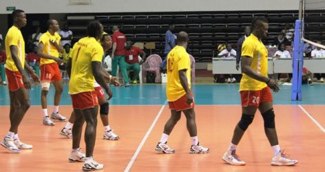 Lions du Volley-ball