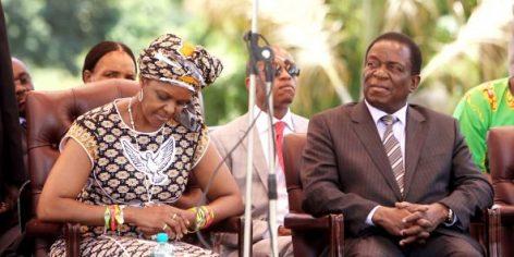 Grace Mugabe et Emmerson Mnangagwa